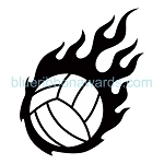 Volleyball Image #VB154