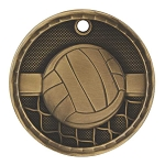 3-D Volleyball Medal