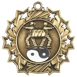 Ten Star Martial Arts Medal