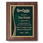 9x12 Cherry Finish Designer Plaque