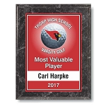 9x12 Color Sport Plaque