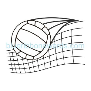 Volleyball Engraving Image